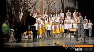 Godišnji koncert učenika Muzičke škole